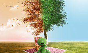 findomestic tree 02